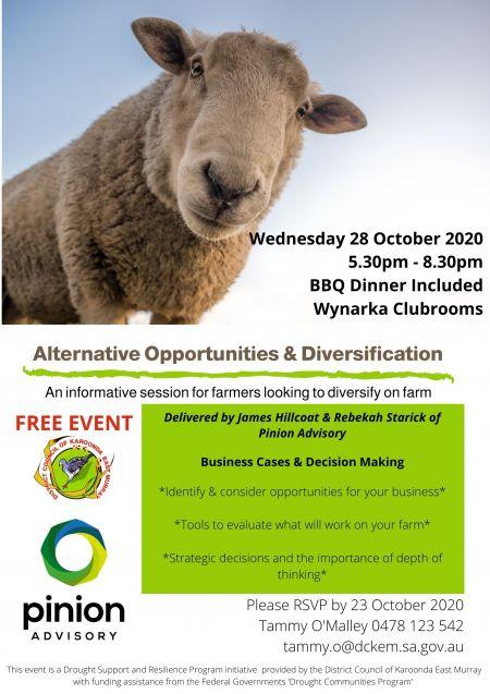Alternative Opportunities & Diversification